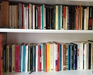 biblioteca de gabi cropped